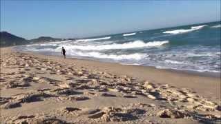 download musica Brasil - Florianopolis - Praia Mole