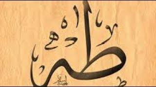Surah Taha - Shaykh Nazim (q)