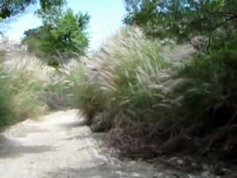 Safari adventure Shakardara -- New pashto song 2012