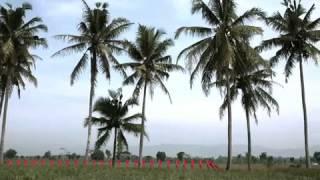 Download Lagu PRABOWO - HATTA Garuda Merah untuk INDONESIA Gratis STAFABAND
