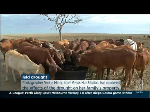 17/12/2015 - ABC24 - Vicki Miller - Drought in Rural Queensland