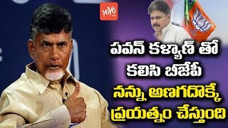 AP CM Chandrababu Strong Comments on Pawan kalyan And BJP | AP Politics