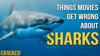 Things Movies Get Wrong About Sharks