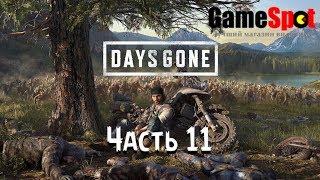Прохождение Жизнь После Days Gone Часть 11 от магазина видеоигр GameSpot.com.ua на PS4 PRO