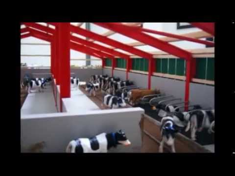 Model Farm Cattle Shed Part 1 Youtube