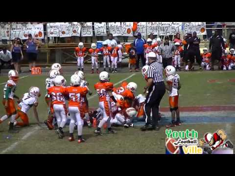 Super Bowl (AYFL) West Park Hurricanes vs PPO Bengals 90s  (FULL GAME SERIES)