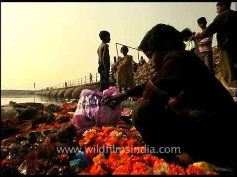Flowers in the garbage: The rag picker kids of Delhi