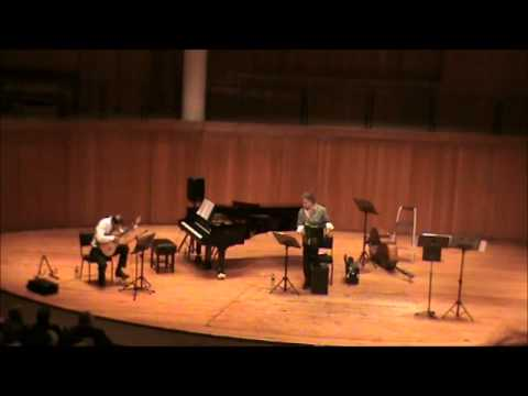 Introduction Lentamente: Peter Narun & Stanislav Angelov (Piazzolla Double Concerto i)