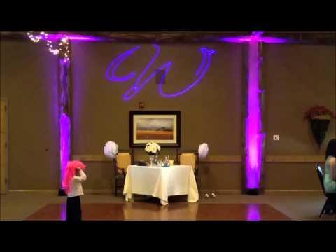 Custom Laser Gobo Effect | Indiana Wedding Experts