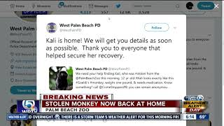 West Palm Beach police says monkey stolen from Palm Beach Zoo recovered