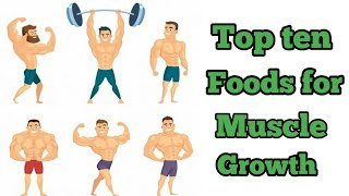 10 protein rich foods for muscle gain  fitness malayalam