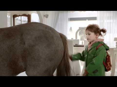 Paard (ECI)