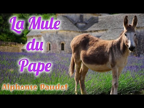 Livre audio : La Mule du Pape, Alphonse Daudet