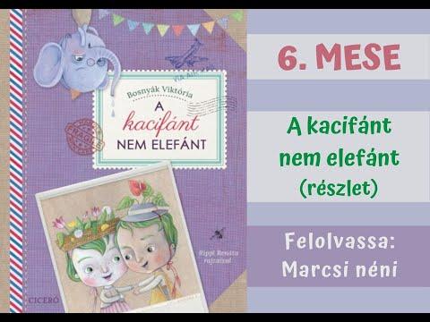 MESÉS FELADATOK - Bosnyák Viktória: A kacifánt nem elefánt (részlet)