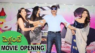 పెళ్లంటే మూవీ లాంచ్ | Pellante Movie Opening | Srikanth, Ali, Mamatha, Shalu Chourasiya, Zeba Anjum