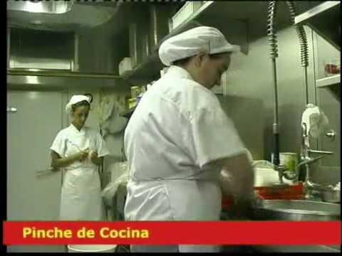 Pinche de Cocina. Ocupaciones. SAE.