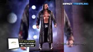 2015: James Storm 20th & New TNA Theme Song -