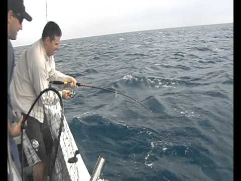 Red Emperor on light tackle