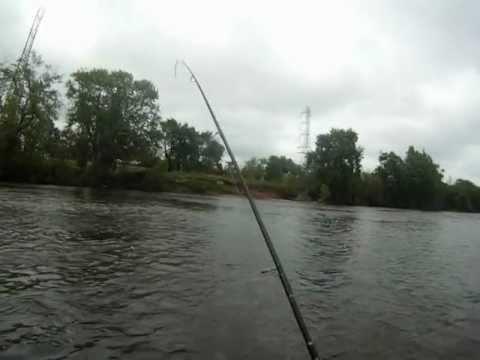 Raritan river for Raritan river fishing