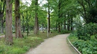 Walking in the 靭 (Utsubo) Park, Osaka, Japan