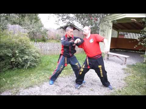 Goh Cho Kun kung fu drills and application I