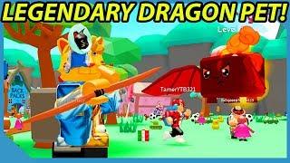 I Got a Legendary Dragon Pet in Roblox Toy Hunt Simulator