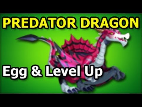 PREDATOR DRAGON Dragon City Egg and Level Up Fast Review