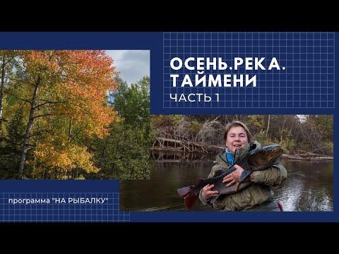 Осень. Река. Таймени. Часть 1.