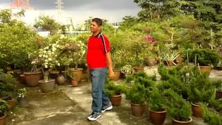 Bangla song Asor