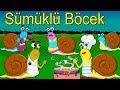 Sümüklü böcek | Çizgi Film Bebek Şarkıları | Balon TV - Çocuk Şarkısı Bir Arada
