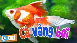 Cá Vàng Bơi - Nhạc Thiếu Nhi Vui Nhộn Hay Nhất Cho Bé