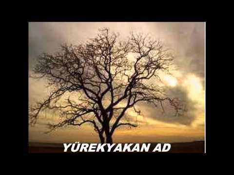Erkan Ogur-Zeynebim ( Yürekyakan AD)