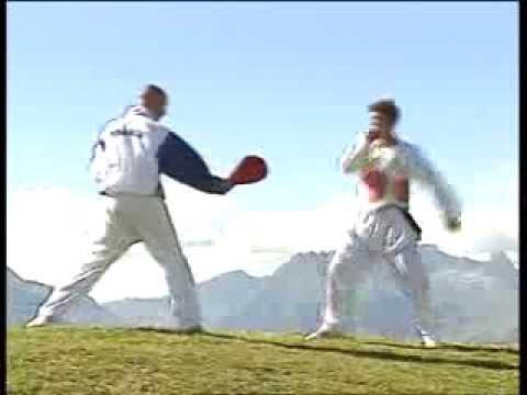 Taekwondo - Techniques De Coups De Pieds video