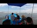 Jule Canelo! Fuimonos mar adentro por primera vez. Una aventura y pesca en mar abierto. Parte 1 -