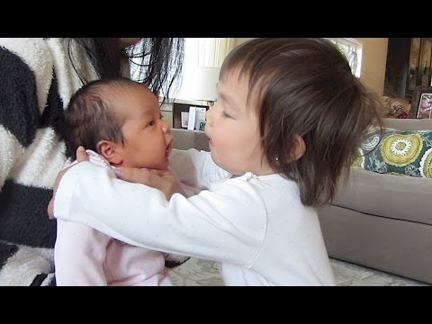 YOU MUST WATCH THIS!!! - April 14, 2014 - itsJudysLife Daily Vlog