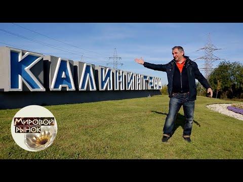 Калининград. Янтарь Отечества 🍅 Мировой рынок 🌏 Моя Планета