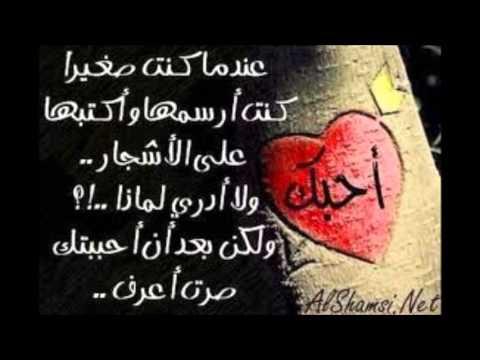 Love Hamza 2013 Hamza Imane Love