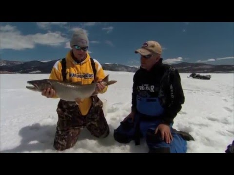 Addictive Fishing: Frozen Mogan - LAKE TROUT in Colorado