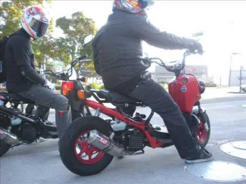 Honda Ruckus HMB ride Video