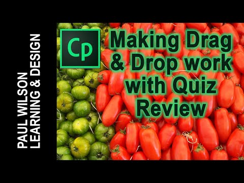 Making Drag and Drop Work with Quiz Review in Adobe Captivate