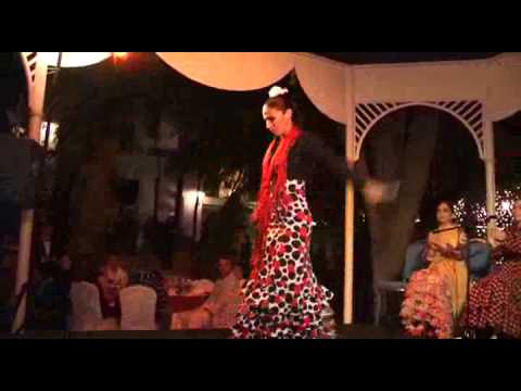 Flamenco Flair in Marbella