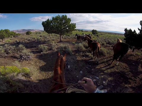 GoPro HERO4: The Adventure of Life in 4K