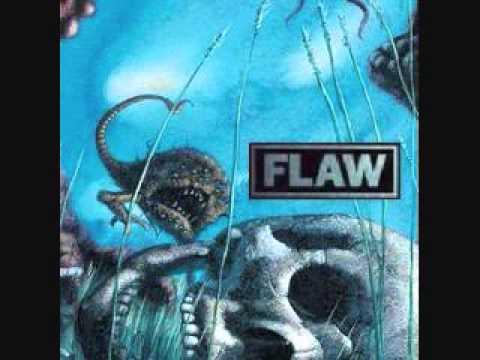 Flaw - flaw-riot