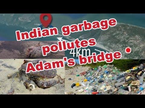 indian garbage pollu|eng