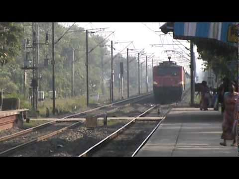 Two canines almost gets crushed by West Bengal Sampark Kranti SF with HWH WAP-4!!!!