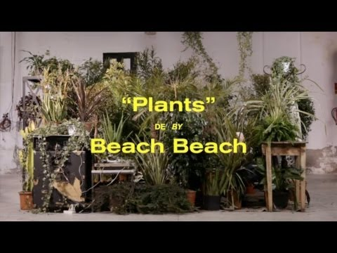 Thumbnail of video Beach Beach