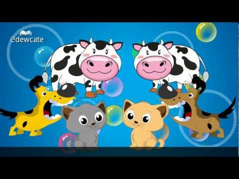 Edewcate english rhymes – Animal Sounds song