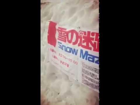 Fun! Japan Campaign Tokyo 2015 Alpine Route Snow Wall