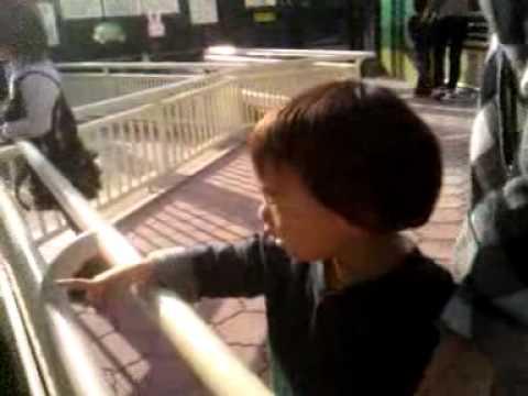 しゅうのすけ、福岡市動物園