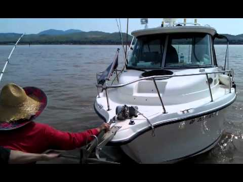 Sturgeon fishing in the delta river 04/07/12